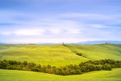 Toskana, Zypressenbaum und Grünfelder. San Quirico Orcia, Italien. Lizenzfreie Stockfotografie