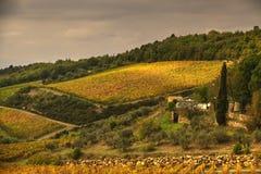 Toskanische Felder Lizenzfreie Stockbilder