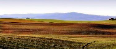 Toskanische Hügel Stockfotos
