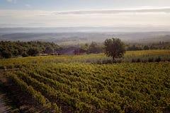 Toskanische Landschaft stockfoto