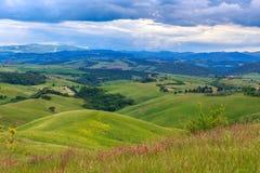 Toskanische Landschaft, Felder und Wiesen nahe Volterra Stockfotografie