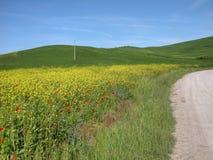 Toskanische Landschaft, Italien Stockfoto