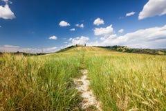 Toskanische Landschaft nahe Certaldo (Florenz, Italien) Stockbild
