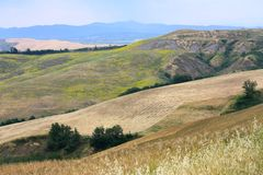 Toskanische Landschaft, Siena, Italien stockfotografie