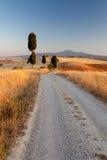 Toskanische Landschaft am Sonnenuntergang, Italien stockfotografie