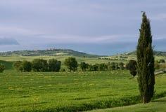 Toskanische Landschaft von Val-d'Orcia bei Pienza Stockfoto