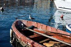 Toskanische Meerblicke, Paradies ist folgend Stockbild