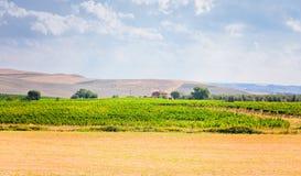 Toskanische peacefull Landschaft Stockbilder