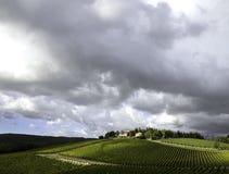 Toskanischer Weinberg mit drastischen Wolken Stockfotografie