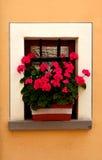 Toskanisches Fenster mit rosa Blumen Stockbild