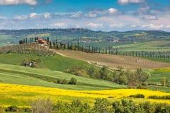 Toskanisches Val d'Orcia im Freien grüne und gelbe Felder Stockfotografie