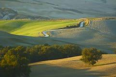 Toskanka krajobraz Zdjęcia Royalty Free