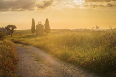 Toskanka krajobraz z kaplicą przy zmierzchem Zdjęcie Stock