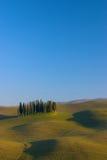 Toskanka krajobrazowy cyprys obraz stock
