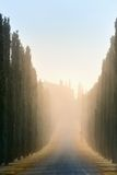 Toskanka krajobrazowy wczesny poranek Zdjęcie Royalty Free