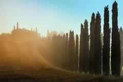 Toskanka krajobrazowy wczesny poranek zdjęcia royalty free