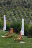 Toskanka odwrót z pokładów krzesłami przegapia drzewa oliwne obraz royalty free