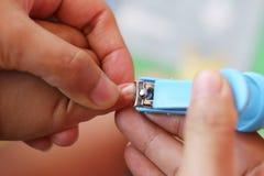 Tosquiadeira de prego azul imagens de stock royalty free