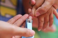 Tosquiadeira de prego azul imagem de stock
