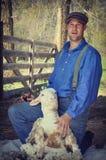 Tosquiador dos carneiros fotos de stock