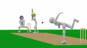 Toss cricket, and repel attack. Stock Images