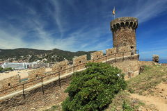 Tossa de mar Stock Image