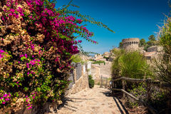 Free Tossa De Mar Royalty Free Stock Image - 89961566