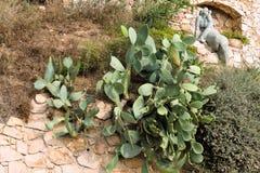 Tossa de Mar, Catalogna, Spagna, agosto 2018 Figura di pietra di una donna su una roccia nel telaio dei cactus fotografia stock libera da diritti