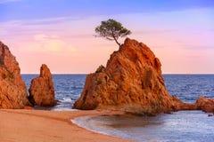 Tossa de Mar on the Costa Brava, Catalunya, Spain stock image