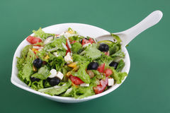 Tossed green salad Stock Photography