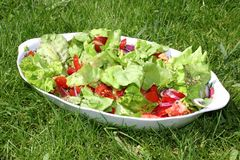 Tossed green salad Royalty Free Stock Photo
