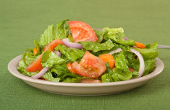 Tossed Salad Stock Photo