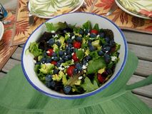 Tossed Salad with Blueberries Royalty Free Stock Photography