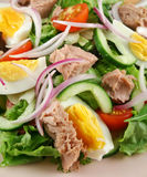 Tossed Tuna And Egg Salad Royalty Free Stock Photo