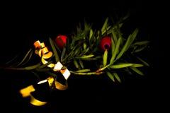 tossico fotografie stock libere da diritti