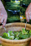Tossing a salad Royalty Free Stock Photos