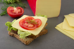 Tost with edam cheese. Toast with edam cheese and tomato royalty free stock photo