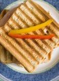 Tostada con el salami foto de archivo