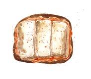 Tostada con queso del queso de soja y salsa anaranjada libre illustration