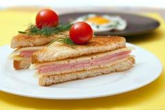 Tostada con queso y el jamón Fotografía de archivo libre de regalías