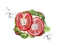 Tostada del tomate con el queso blanco, la lechuga y la pimienta negra ilustración del vector