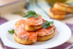 Tostada frita con los salmones salados Imagen de archivo libre de regalías