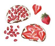 Tostadas de la fruta de la acuarela ilustración del vector