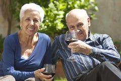 Tostando con il vino rosso Fotografie Stock Libere da Diritti