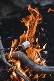 Tostatura delle caramelle gommosa e molle su fuoco immagini stock