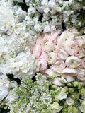 Tot bloei komend wit, roze, en groen bloembed van ranunculus, hydrangea hortensia, sering De hoogste mening, sluit omhoog royalty-vrije stock afbeelding