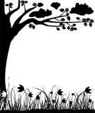 Tot bloei komende boom en tulpen, de lente, frame, vector Stock Foto's