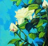 Tot bloei komende struik van witte rozen Stock Afbeeldingen