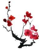 tot bloei komende tak van kers. vector illustratie