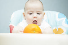 Tot and orange Royalty Free Stock Images